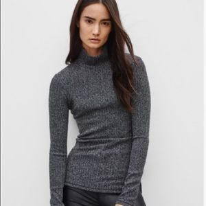 Aritzia|Wilfred Free Buswell Turtleneck